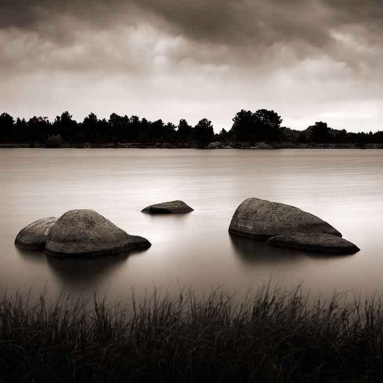 Letitia Lake -