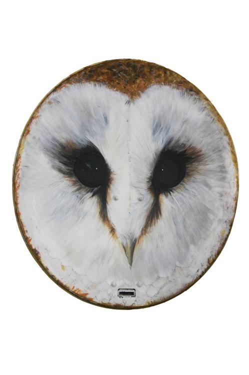 Gentle Owl - Image 0