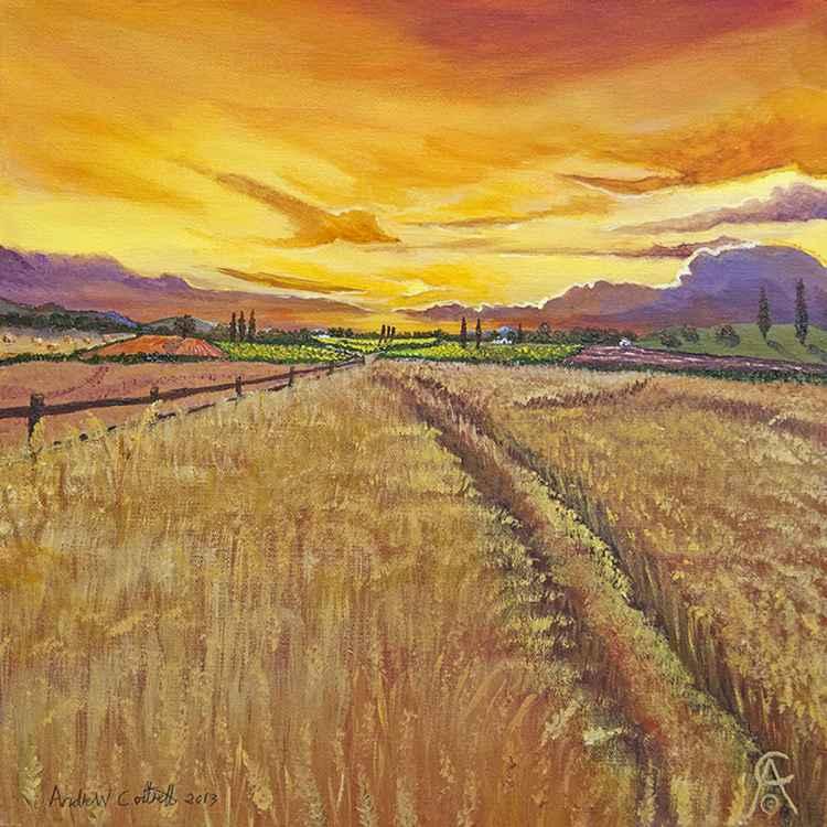 Summer Harvest -