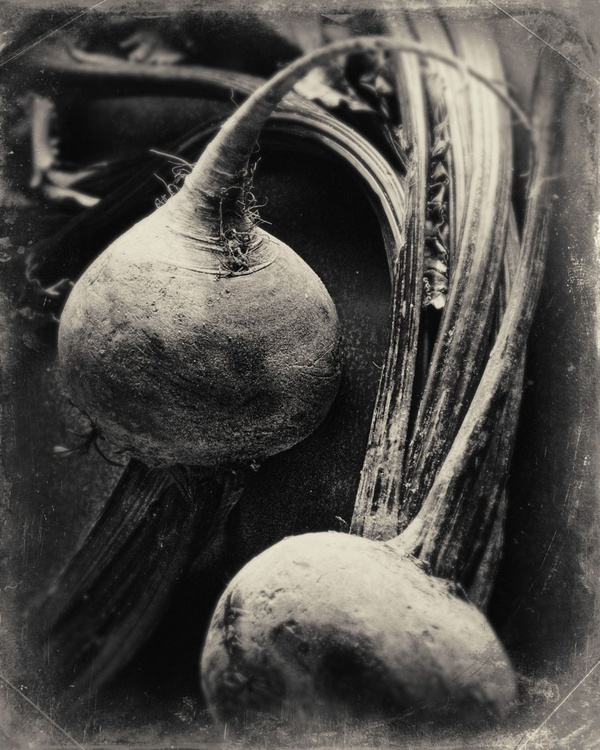 Two Beets - Image 0