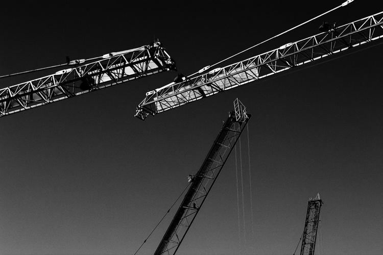 """Cranes"" - Image 0"
