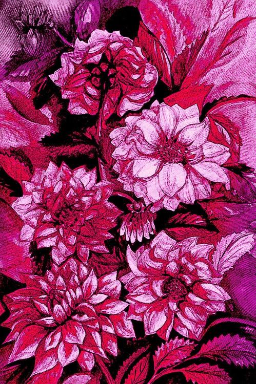 Chrysanthemums in purple - Image 0