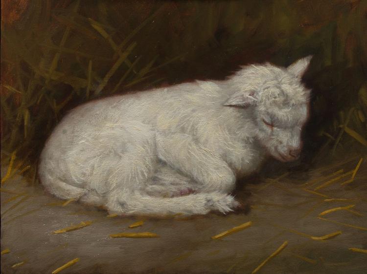 Sleeping goat - Image 0