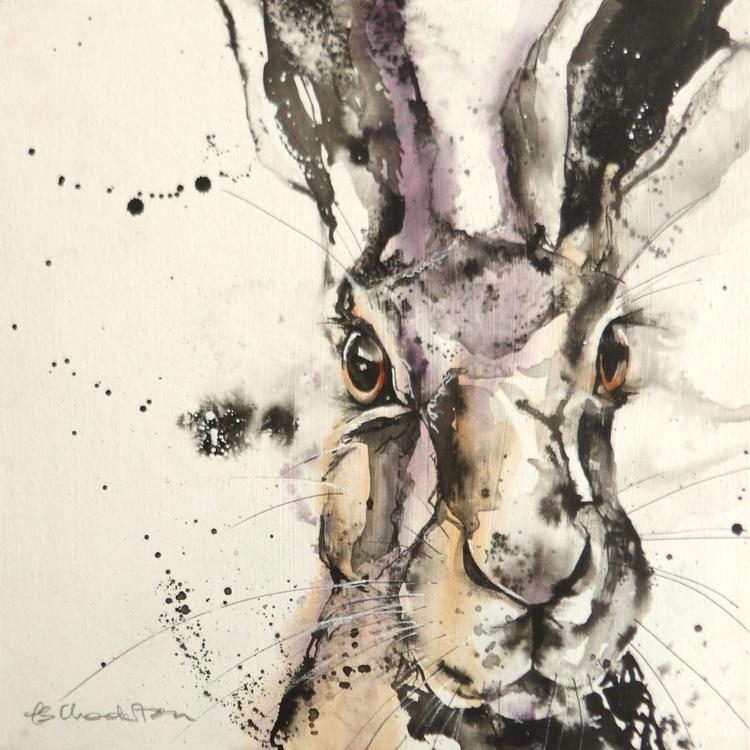 Hare encounter - Image 0