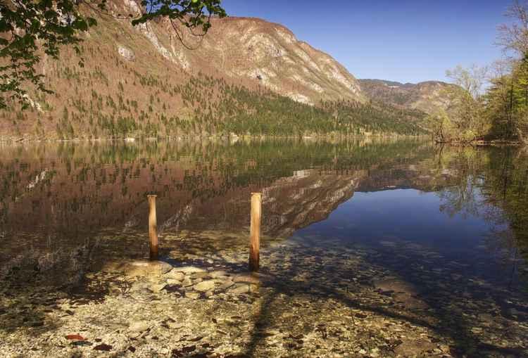 Lake Bohinj -