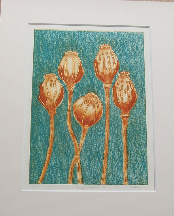 SALE Poppy Seedheads I - Image 0