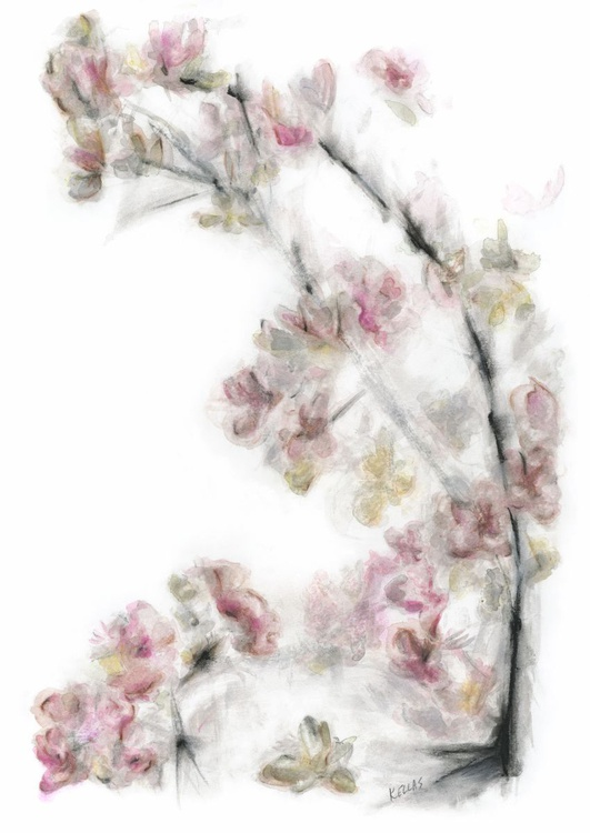 Silver and pink flowers - Image 0