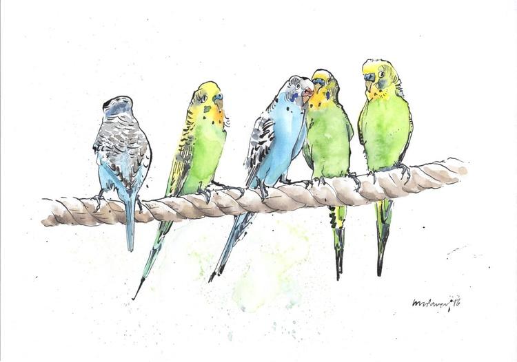 A Row of Budgies - Daily Bird #11 - Image 0