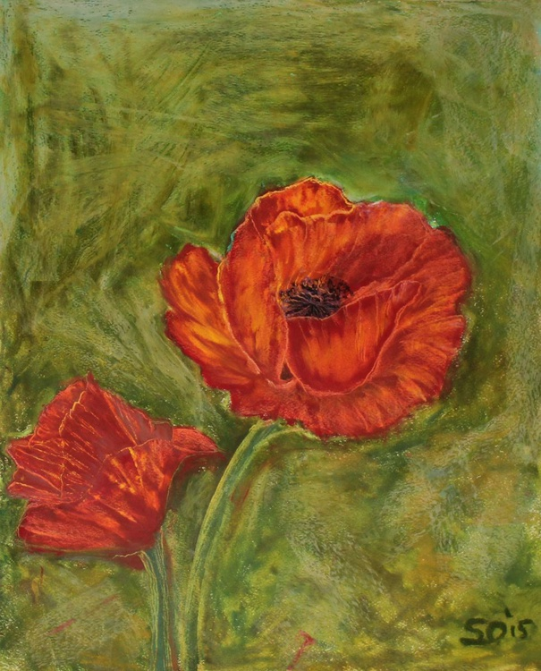 "Red Poppy 11""x14"" (27.94x35.56cm) - Image 0"