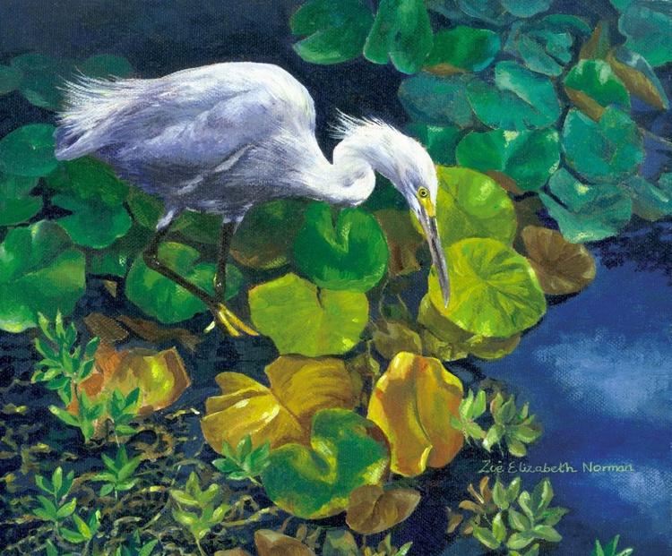 Snowy Egret - Image 0