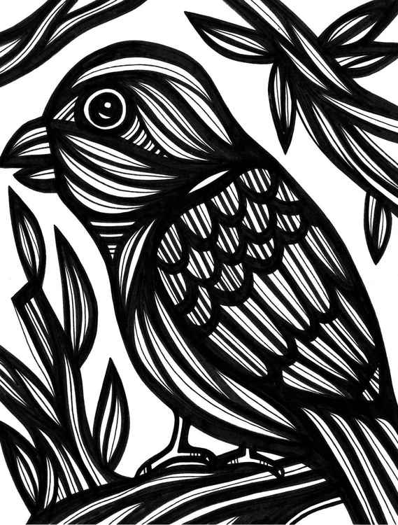 Bird Voracious Nature Original Drawing -
