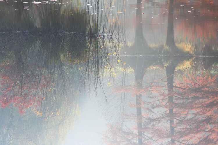 Landscape six -