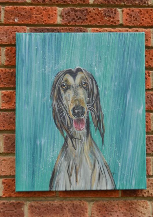 Soggy Doggy - Image 0
