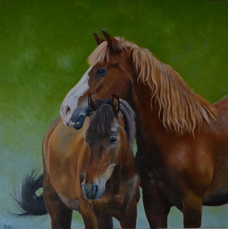 "oil painting 40 x 40 cm ""horses tenderness"" canvas by Paola Ali - Image 0"