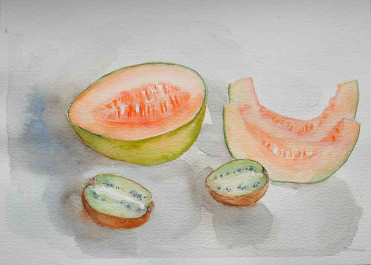 Still life with melon and kiwis