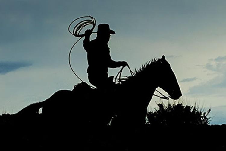 Knight Rider - Image 0
