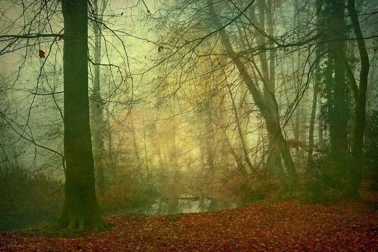 Autumn Mood - Canvas 75 x 50 cm - Image 0