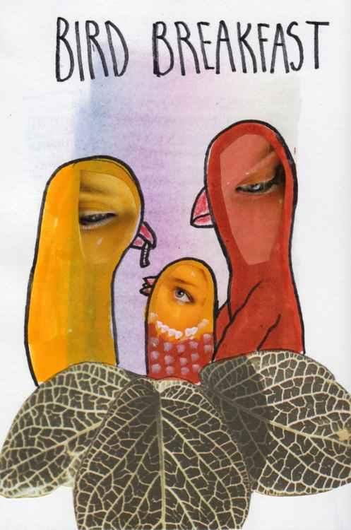 Bird breakfast -