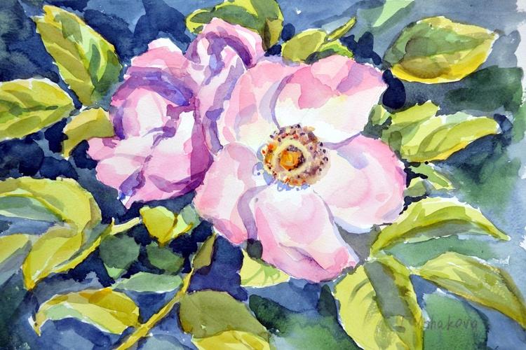 Wild rose - Image 0
