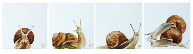 Snail across the Canvas Series + Free Miniture - Image 0