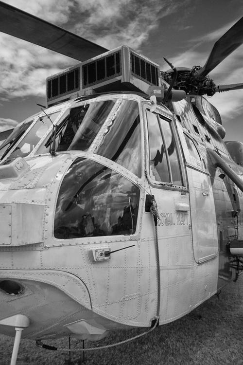 Search & Rescue #1 [#201206301] - Image 0