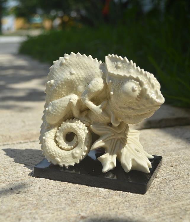 Chameleon - Image 0