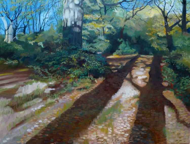 Autumn Shadows - Epping Forest