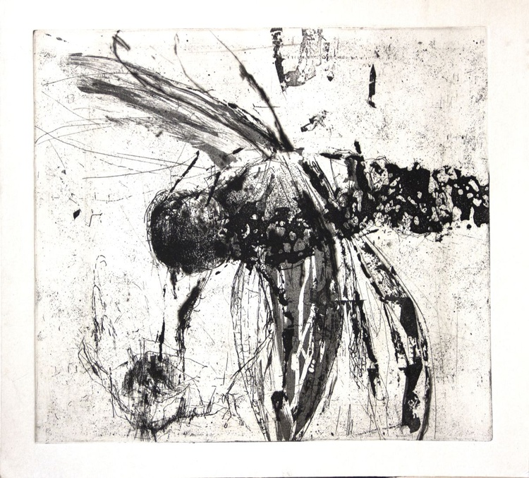dragonfly 8 - Image 0