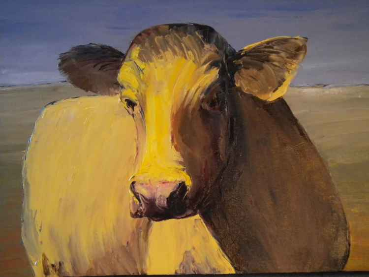 Portrait of a Cow -