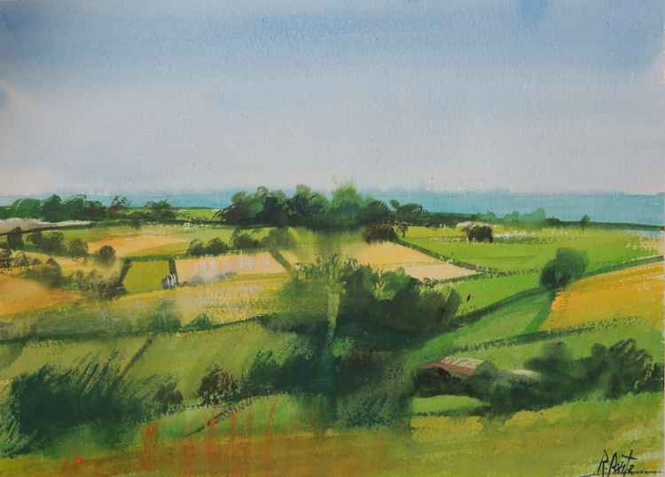 Devon countryside -