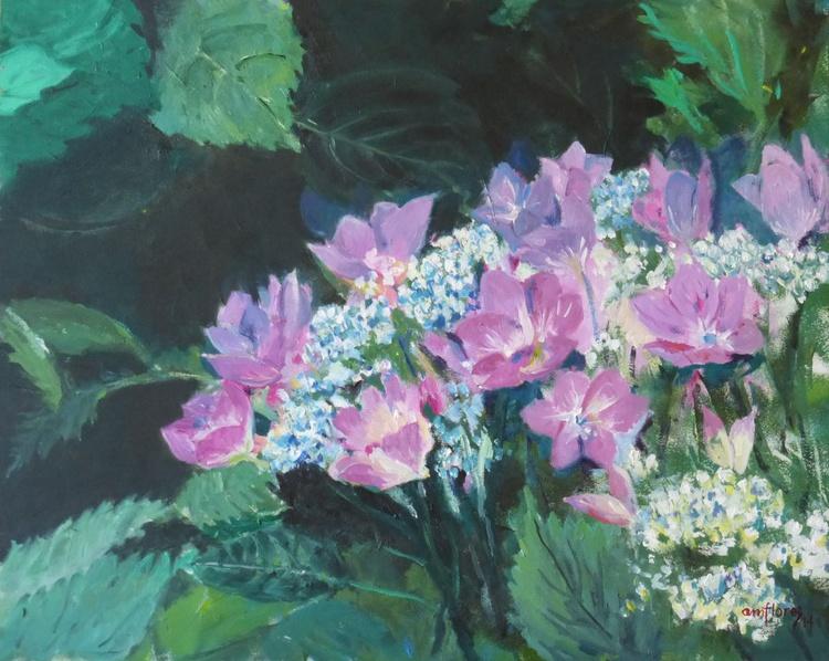 """Hydrangeas in the wild"" - Image 0"