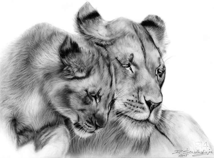 Lioness and Cub - Image 0