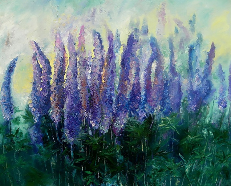 Field of Lupins - Image 0
