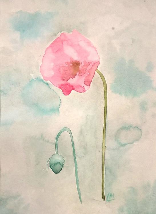 Single Poppy Study - Image 0