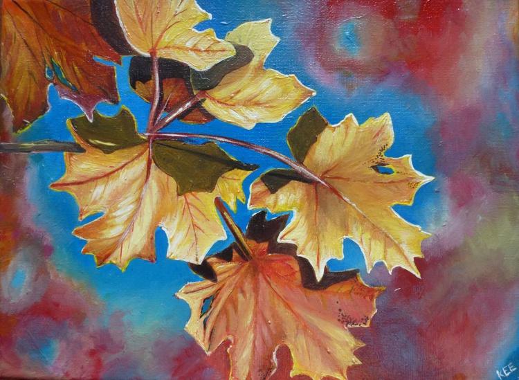 Shades of Autumn - Image 0