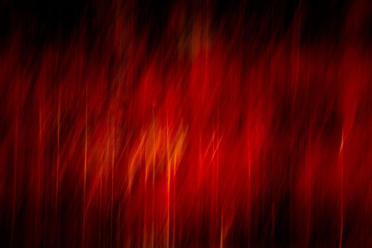 Winter Fire   Extra large tree abstract limited edition print with free shipping - Image 0