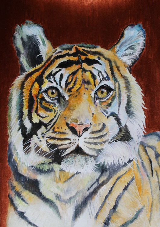 The Copper Tiger, framed ready to hang. - Image 0