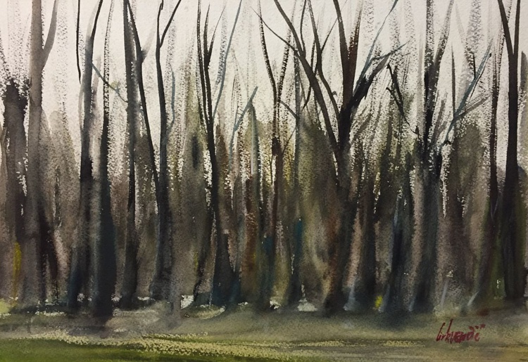 Forrest trees - Image 0
