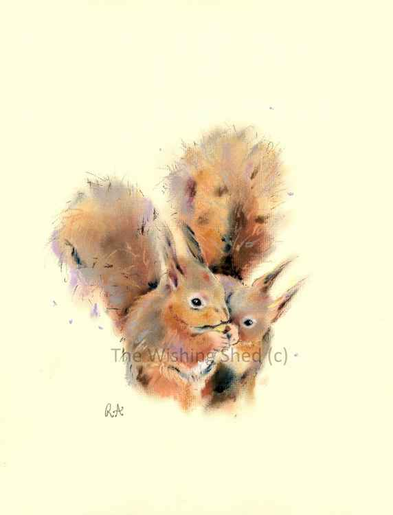 Young Red Squirrels - Pastel painting on paper