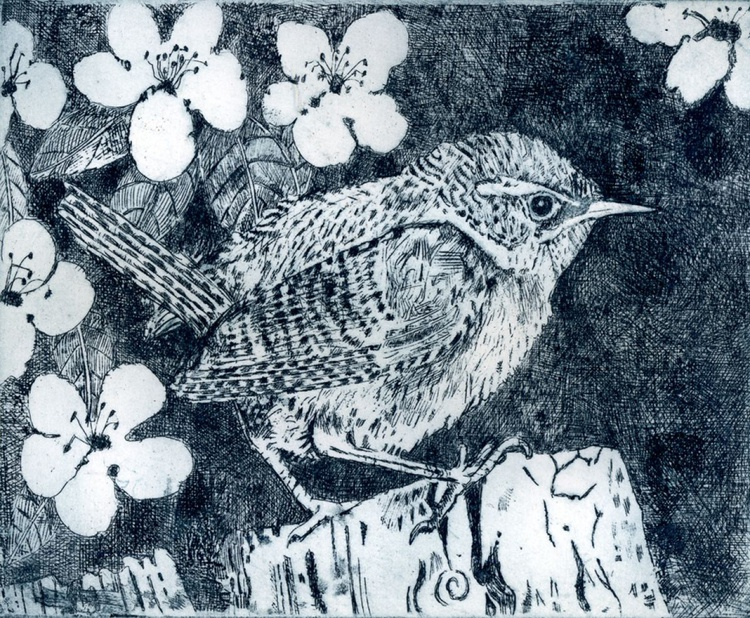 Wren with quince blossom - Image 0