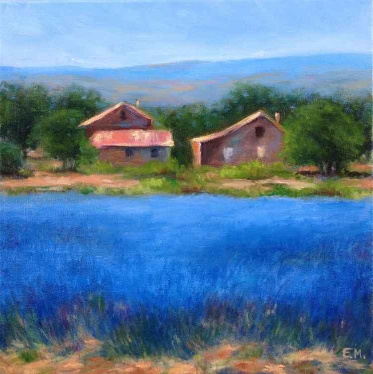 Lavender Farm -