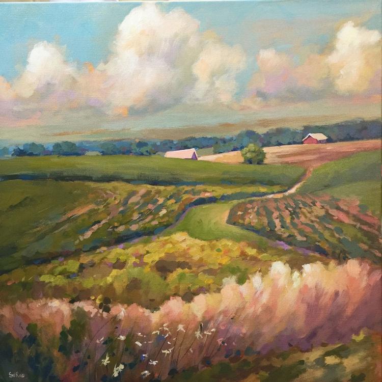 Summer fields - Image 0