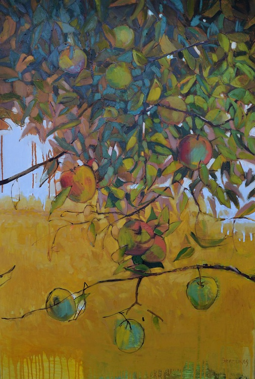12 apples - Image 0