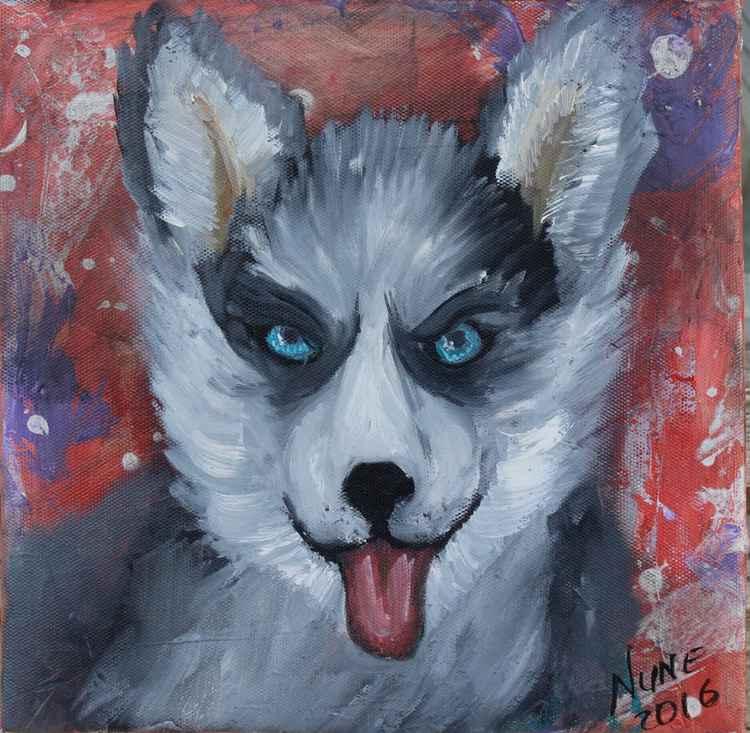 Husky puppy portrait -
