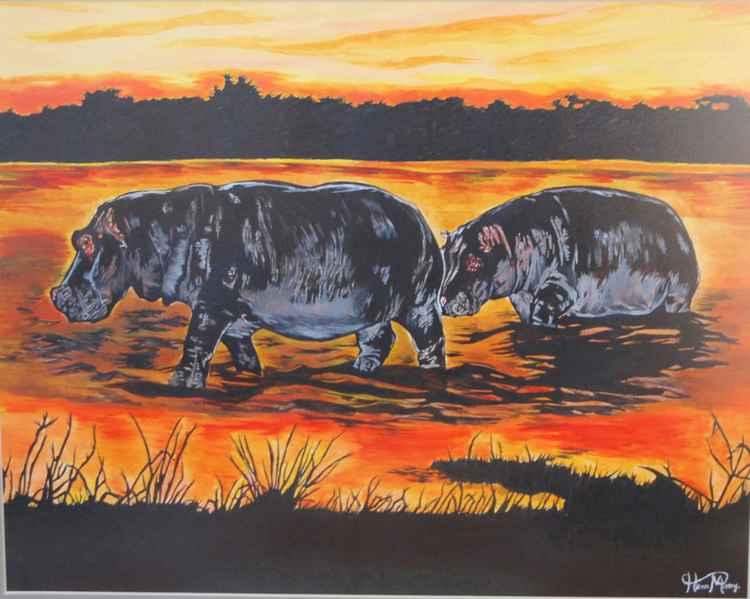Hippos ( sunset )
