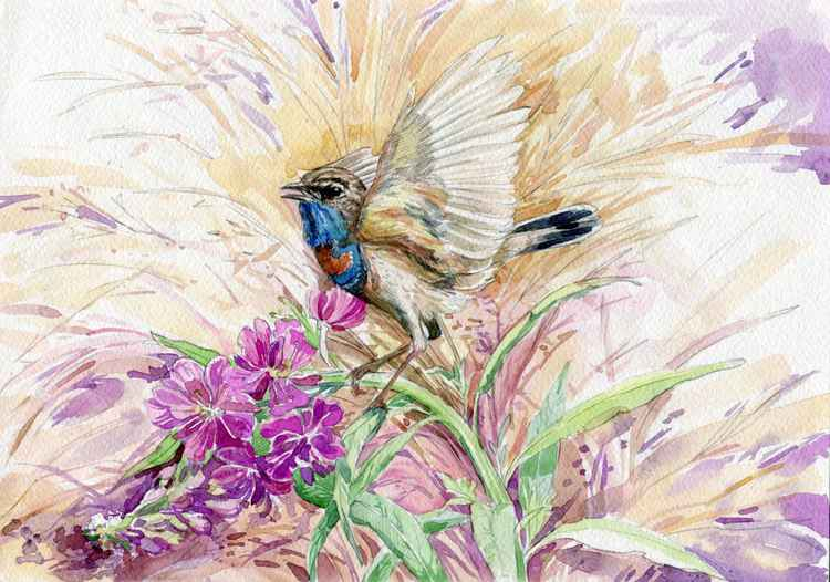 ORIGINAL WATERCOLOR  Bluethroats (LUSCINIA SVECICA) -