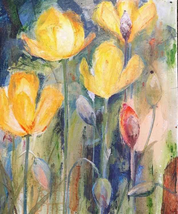 Yellow poppies -