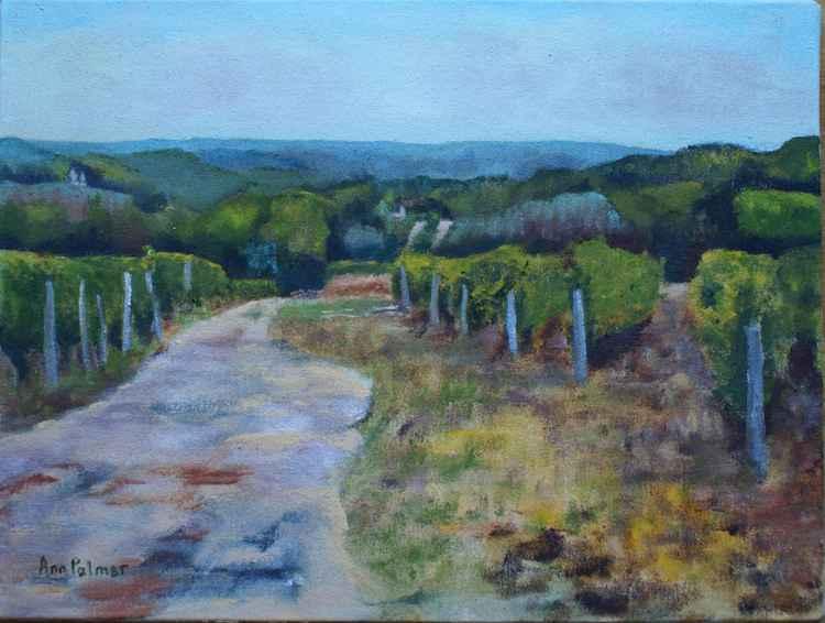 September Vines -