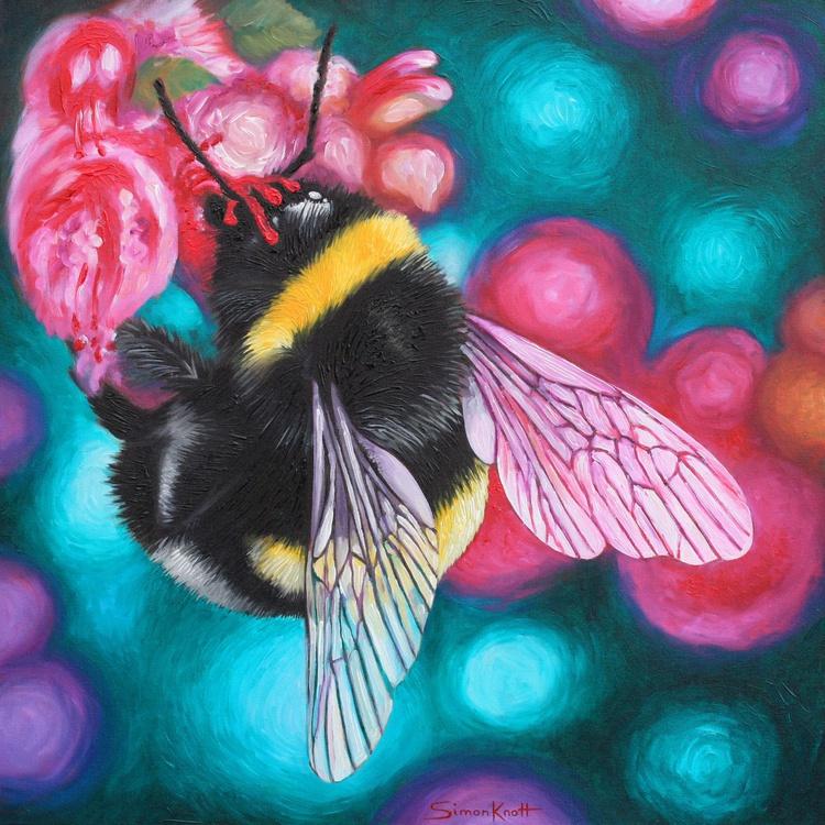 Bombus Lucorum - White-Tailed Bumblebee - Image 0