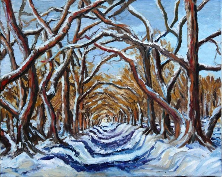 Dance of winter trees - Image 0